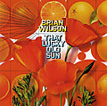 Allcdcovers_brian_wilson_that_lucky